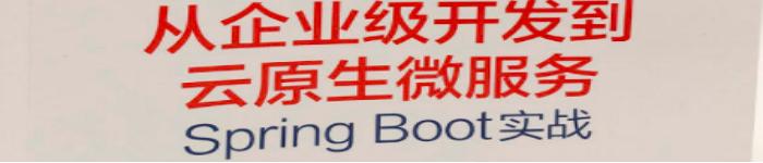 《从企业级开发到云原生微服务:Spring Boot实战》pdf电子书免费下载