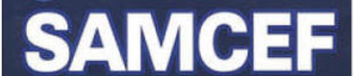 《SAMCEF 有限元分析与应用实例》pdf电子书免费下载