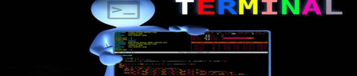 了解Linux文件的颜色代码