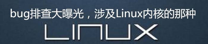bug排查大曝光,涉及Linux内核的那种