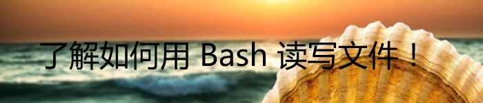 了解如何用 Bash 读写文件