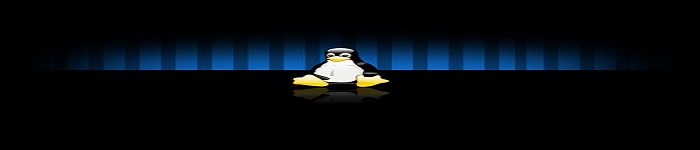 Linux vi/vim 中的一些技巧