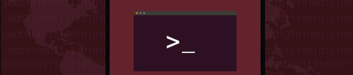 Linux 中 ss 命令的使用实例
