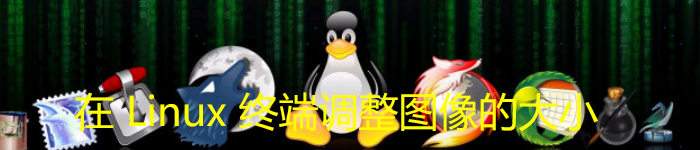 在 Linux 终端调整图像的大小